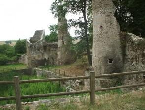 753471_jep-ruines-du-chateau-de-la-turmeliere-journees-du-patrimoine-2016
